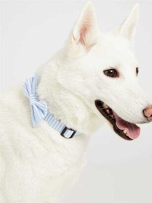 Bear & Ollie's Blue Seersucker Bow Tie - A'Beautiful Soul