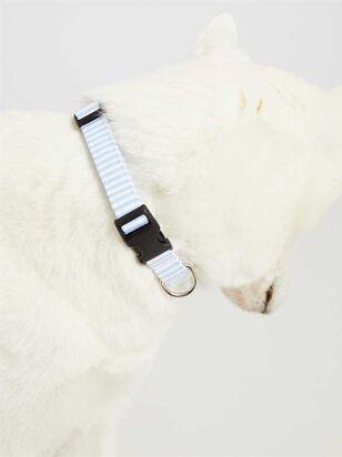 Bear & Ollie's Blue Seersucker Collar - Medium - A'Beautiful Soul