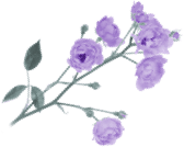 Background flower image